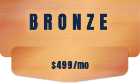 sem marketing bronze