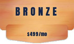 seo st. louis bronze