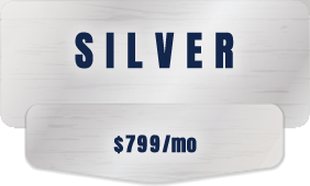 sem marketing silver