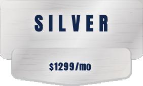 seo st. louis silver
